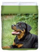 Young Rottweiler Duvet Cover
