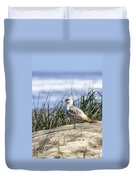Young Seagull No. 2 Duvet Cover