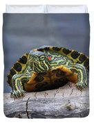 Young Turtle Duvet Cover