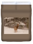 Young White Tailed Buck In Winter Duvet Cover