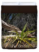 Pedernales Park Texas Yucca By The Dead Tree Duvet Cover