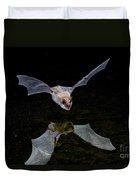 Yuma Myotis Bat Duvet Cover