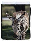Zebra Crossing V7 Duvet Cover