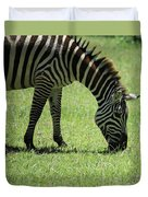 Zebra Eating Grass Duvet Cover