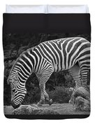Zebra In Black And White Duvet Cover