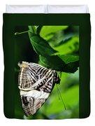 Zebra Long-wing Butterfly  Duvet Cover