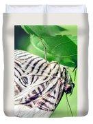 Zebra Long-wing Close-up Duvet Cover