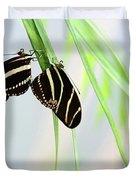 Zebra Longwing Butterflies Mating Duvet Cover