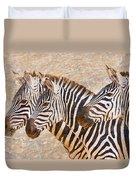 Zebras 5236b Duvet Cover