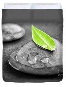 Zen Stones Duvet Cover by Elena Elisseeva