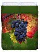 Zinfandel Grapes Duvet Cover