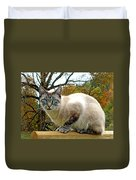 Zing The Cat In The Fall Duvet Cover