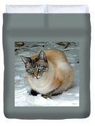 Zing The Cat On The Porch In The Snow 2 Duvet Cover
