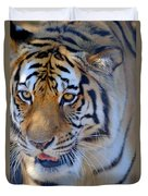 Zootography3 Tiger Prowl Close-up Duvet Cover