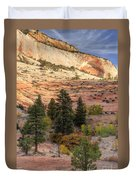 East Zion Canyon Hdr Duvet Cover