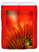 0001 Echinacea Pow Wow Sunrise Duvet Cover