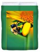 001 Sleeping Bee Duvet Cover