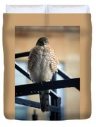 03 Falcon Duvet Cover