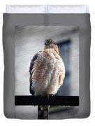 04 Falcon Duvet Cover
