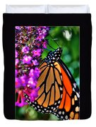 007 Making Things New Via The Butterfly Series Duvet Cover