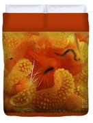 1 Cm Yellow Tube Polyp With A Small Duvet Cover