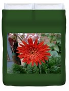 A Beautiful Red Flower Growing At Home Duvet Cover