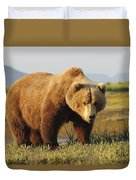 A Brown Grizzly Bear Ursus Arctos Duvet Cover