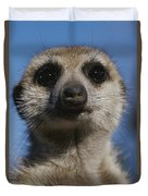 A Close View Of A Meerkat Suricata Duvet Cover