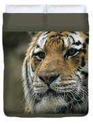 A Close View Of The Face Of Khuntami Duvet Cover