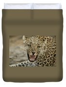 A Female Leopard, Panthera Pardus Duvet Cover