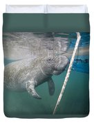 A Manatee Gets Dangerously Close Duvet Cover