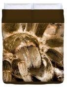 A Tarantula Living In Mangrove Forest Duvet Cover