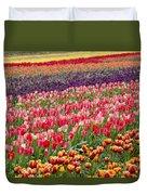 A Tulip Field Duvet Cover