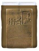 Ancient Astronomical Calendar Duvet Cover