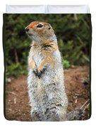 Arctic Ground Squirrel Duvet Cover