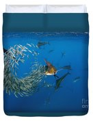 Atlantic Sailfish Istiophorus Albicans Duvet Cover