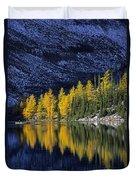 Autumn, Alpine Larch Trees, Lake Agnes Duvet Cover