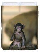 Barbary Macaque Macaca Sylvanus Infant Duvet Cover