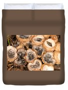 Birds Nest Fungus Duvet Cover