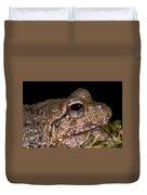 Bobs Robber Frog Duvet Cover