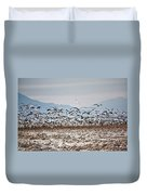 Bombay Beach Birds Duvet Cover