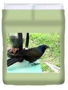 Brewers Black Bird  Duvet Cover