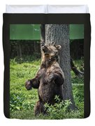 Brown Bear Itch Duvet Cover