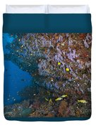 Colourful Reef Scene, Ari And Male Duvet Cover