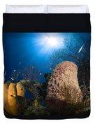 Coral And Sponge Reef, Belize Duvet Cover