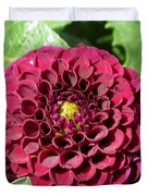 Dahlia Named Pride Of Place Duvet Cover