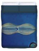 Diatom - Diploneis Crabro Duvet Cover by Eric V. Grave