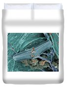 Diatom With Thermophilic Bacteria Duvet Cover by Ted Kinsman