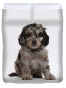 Doxie-doodle Puppy Duvet Cover