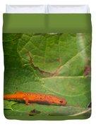 Easterm Newt Nnotophthalmus Viridescens 15 Duvet Cover